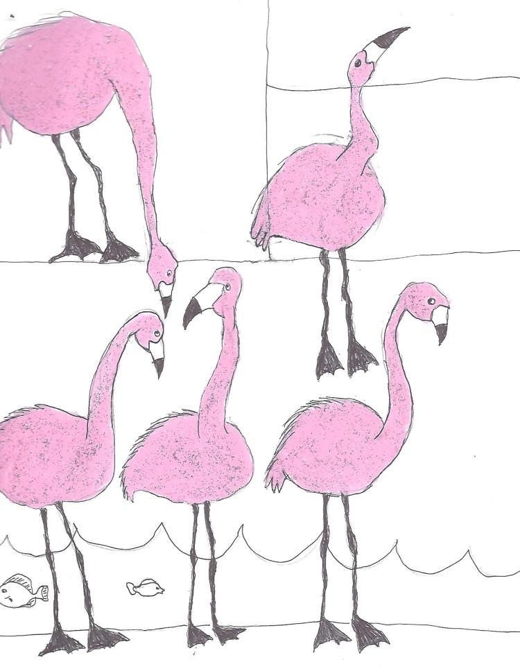e-birds