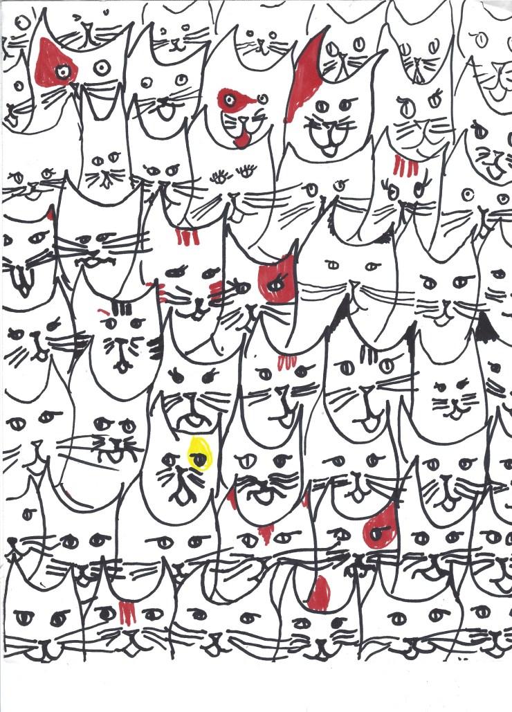 e-cats