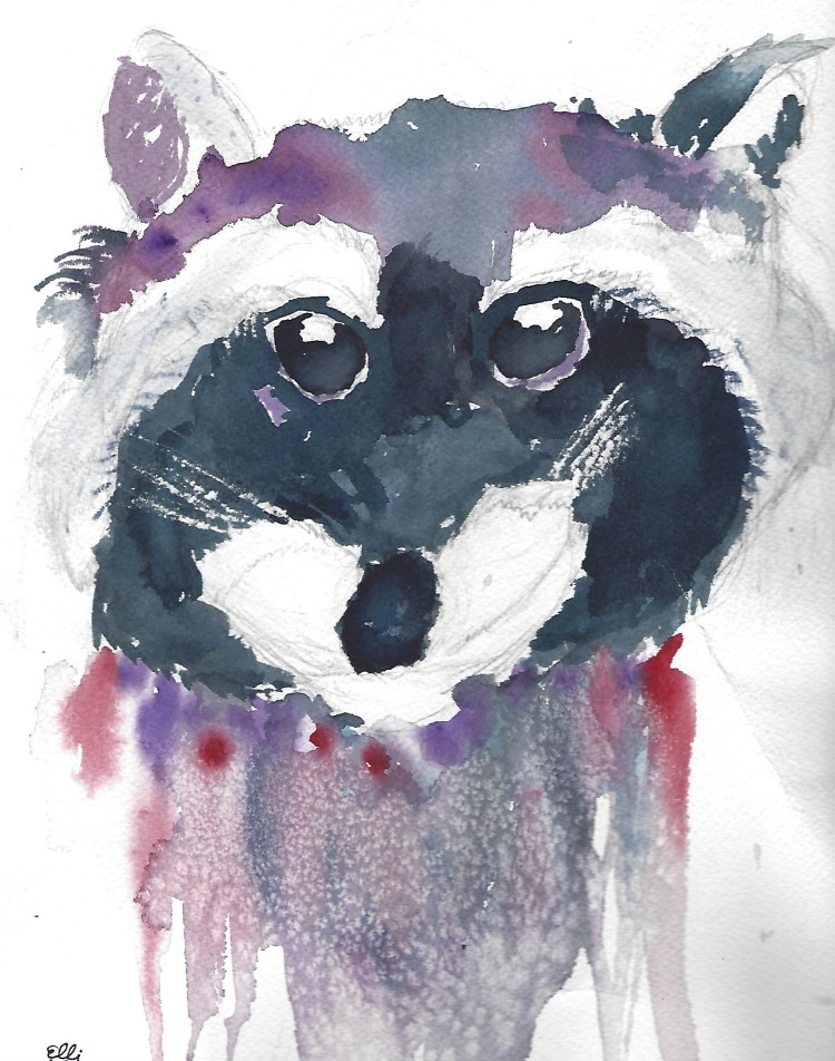 e-raccoon